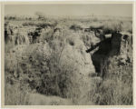 Photograph of an irrigation pipe and the Muddy River, Moapa Valley, Nevada, 1948