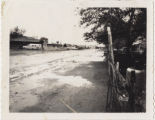 Photograph of flooded street in Vegas Heights, Nevada, 1964