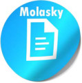 Transcript of interview with Susan Molasky by Barbara Tabach, March 11, 2014