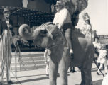 Photograph of Jay Sarno riding an elephant outside of Circus Circus casino, Las Vegas, Nevada,...