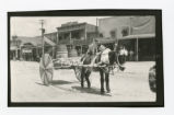 Photograph of a dog on a burro's back in the Labor Day parade, Tonopah (Nev.), 1904