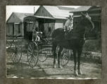 Photograph of a dogs riding in a buggy and on horseback, 1900-1925
