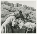 Photograph of a Paiute woman and children doing laundry, Pioche (Nev.), 1900-1925