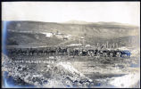 Photograph of horse team pulling wagons loaded with ore, Goldfield (Nev.), early 1900s