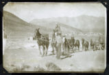 Photograph of a man leading a horse team, Round Mountain (Nev.), early 1900s