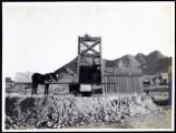 Photograph of mule powered mining apparatus [arrastra], Tonopah (Nev.), early 1900s